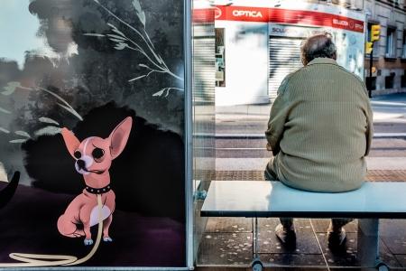 street photography en zaragoza, cursos de fotografia callejera en zaragoza con rober tomas