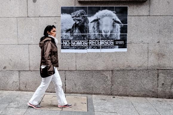 curso de fotografia de calle Rober tomas madrid
